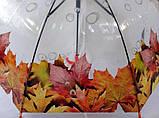 Зонтик детский прозрачный с цветами по краю купола  на 8 спиц со свистком, фото 3