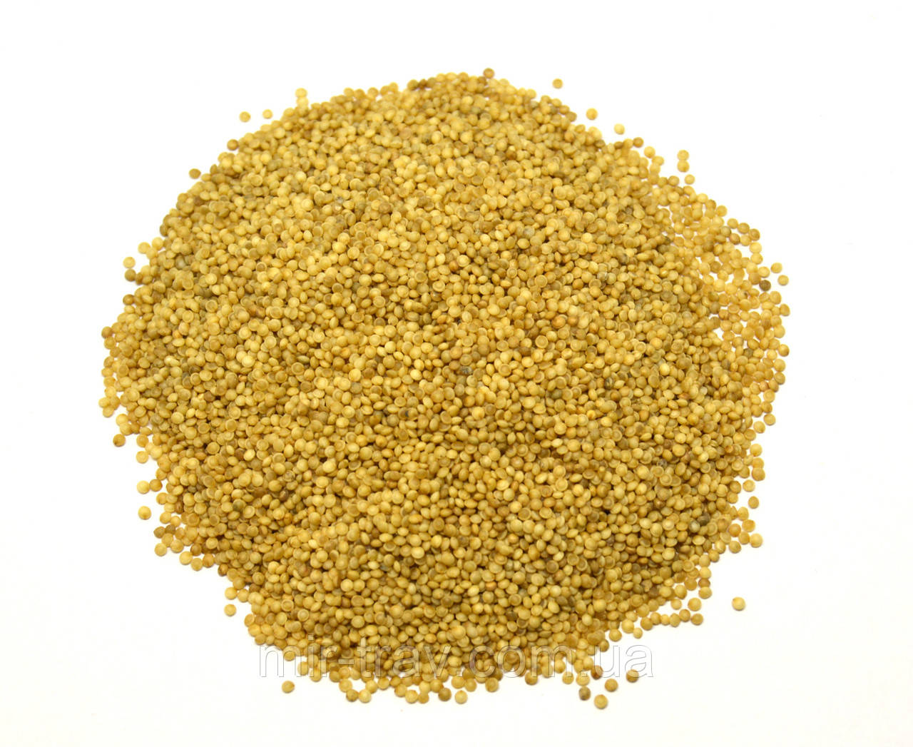 Семена Амаранта 500 грамм