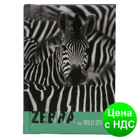 "Блокнот ""Wild Spirit"", А6, 80 арк, бумага 65 г/м2, клетка, ""Зебра""  CF21201-21, фото 2"