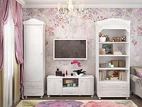 Мебель  Ассоль комплект-102
