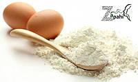 Альбумин 80% белка (яичный белок) Бельгия 500гр