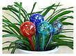 2x Стекляные шары для автополива растений Аква Глоб, Aqua Globes, F65, фото 4