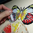 Бабочка-магнит «ПАВЛИНИЙ ГЛАЗ (AGLAIS IO)» БАТ01, фото 3