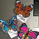 Бабочка-магнит «ПАВЛИНИЙ ГЛАЗ (AGLAIS IO)» БАТ01, фото 2