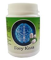 Готу Кола  (Gotu Kola)  память, сосуды головного мозга
