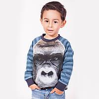 3D свитшот в категории кофты и свитеры для мальчиков в Украине ... a67d53e31af7c