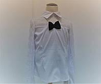 Блуза белая для девочки с длинным полупрозрачным рукавом с синим бантом