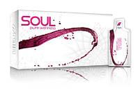 Клеточное питание гель-смузи Soul от Rain