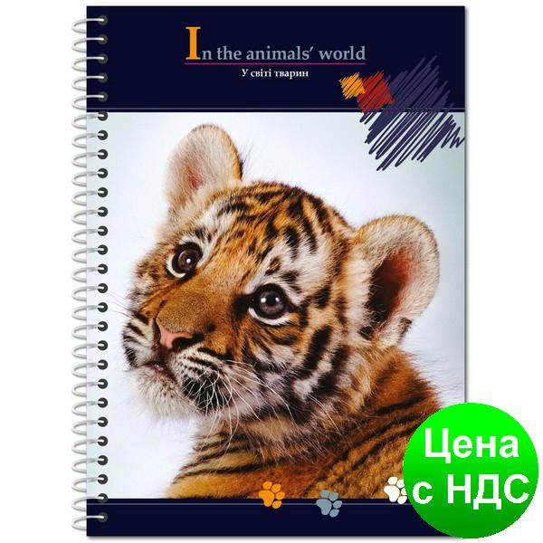 """Блокнот """"В мире животных"""" А6, обложка -  пластик, 48 листов, ассорти E20319-97"""