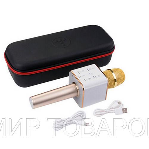 Микрофон для караоке DM Karaoke Q7-2