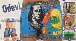 Чоловічі боксери Veenice бавовна з доларом