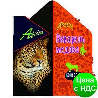 """Краски акварельные медовые 18 цветов """"Africa"""" (акварель медовая) E60114"""