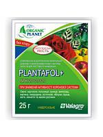Минеральное удобрение Плантафол 20+20+20 Valagro 25 г