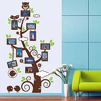 Наклейка виниловая Дерево с фото