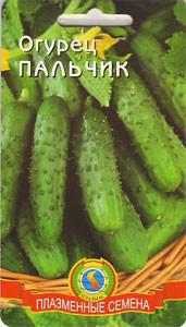 Семена огурцов Огурец Пальчик 12 штук  (Плазменные семена)