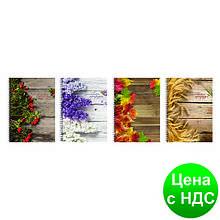 """Блокнот """"Рисунки природи"""", А4, боковая спираль, 80 листов, клет., ассорти O20330"""