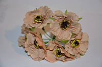 Цветок Мак темно-бежевый