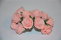 Цветок роза персиковая