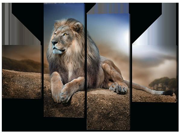 Модульная картина Лев в природе