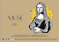 Альбом для рисования Sketch Muse 50 л спираль 030-160 Школярик