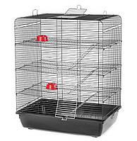 Клетка для крысы Remy Black G126 ™️ InterZoo (580*380*715 мм)