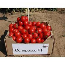 Семена томата Солероссо F1 (1000 сем.) Nunhems