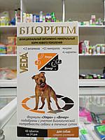 Биоритм для собак средних пород, 48 табл. по 0,5г.