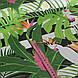 Хлопковая ткань польская попугаи белые в зеленых листьях на черной полоске, фото 2
