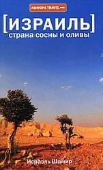 Израиль. Страна сосны и оливы, или неприметные прелести Святой земли. Амфора Travel