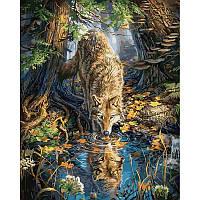 Картина по номерам Волк в дикой природе, 40x50 см., Babylon