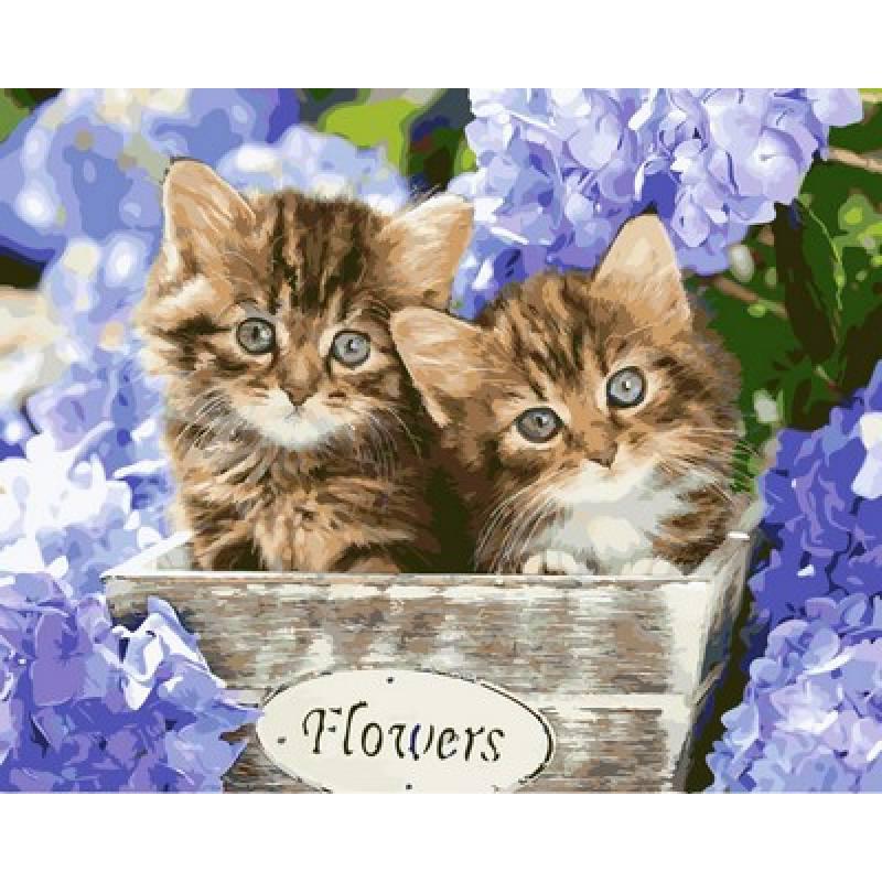 Картина по номерам Милые котята, 40x50 см., Babylon