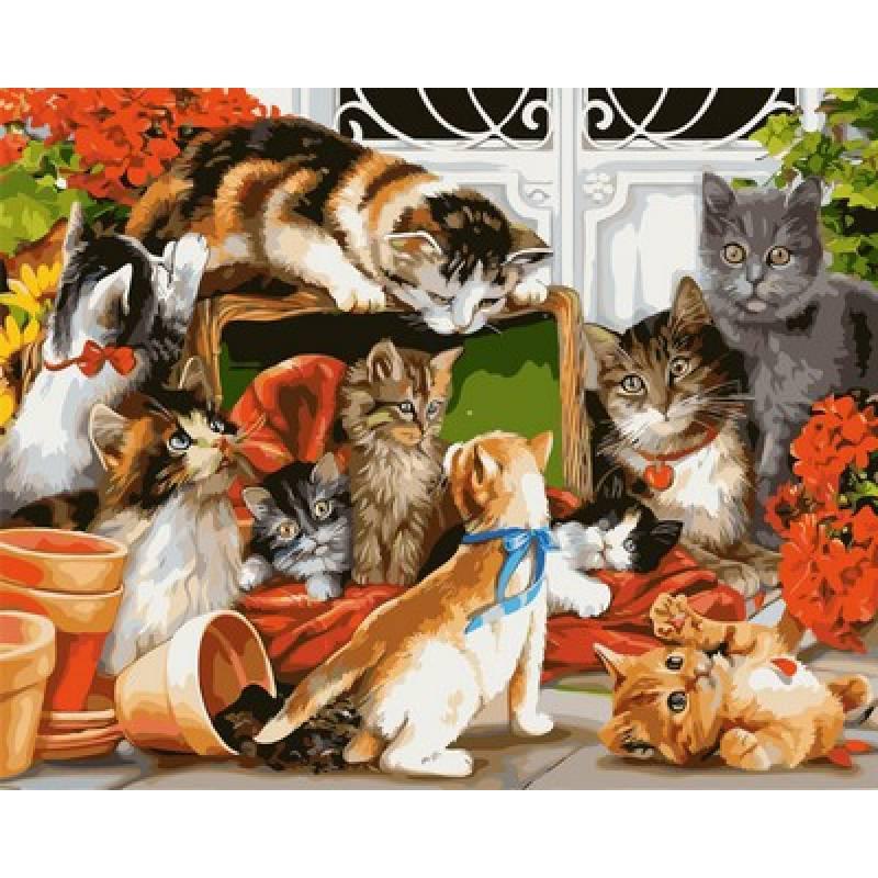 Картина по номерам Время кошачьих игр, 40x50 см., Babylon