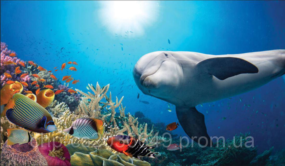 Скинали Дельфин - стекло с фотопечатью