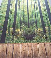 Рулонні штори Ліс