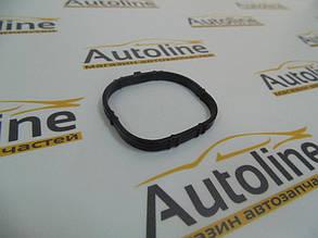 Прокладка коллектора впуск (01121000) Ajusa