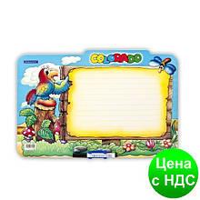 Доска ламинированная для письма COLORADO, детский вариант gr.TAB3