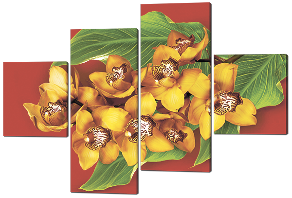 Модульная картина Желтые орхидеи на красном фоне