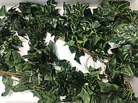 Искусственная лиана-зеленый плющ.