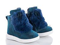 Ботинки детские Clibee-Doremi K104 blue (21-26) - купить оптом на 7км в одессе