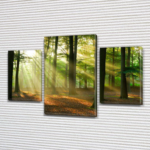 Картины для кухни купить, на Холсте син., 45х70 см, (30x20-2/45x25)