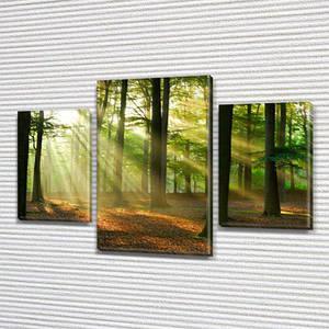 Картина Утро в лесу , на Холсте син., 45х70 см, (30x20-2/45x25)