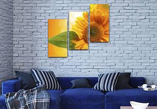 Картины купить модульные на Холсте син., 70x80 см, (50x25-2/50х25), фото 3