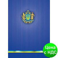 Книга учета Укр. симв. 96 листов/клет.оф.(тв. лам. обл), А4 BM.2400-38