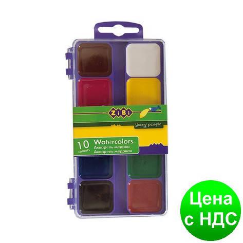 Краски акварельные 10 цв.,  пласт./кор., б/п., фиолетовый ZB.6520-07, фото 2
