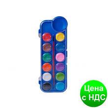 Фарби акварельні 12кол., пласт./кор., з/п., синій ZB.6559-02