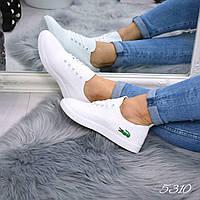 Кеды женские Lacoste белые 5310, мокасины женские, фото 1