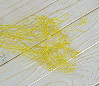 Сухоцвет мелкий Каспия желтого цвета