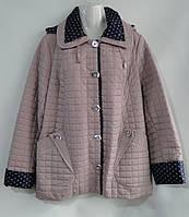 ad6ca76f53b3 Куртки женские оптом (48-58 размеры) Украина, купить со склада в Одессе