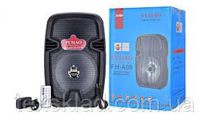 Колонка акумуляторная FH-A08 / 50W (USB/FM/Bluetooth)