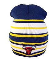 Шапка Chicago Bulls 11040 в полоску